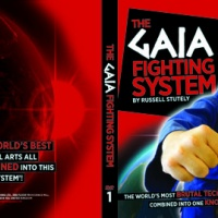 The Gaia Fighting System
